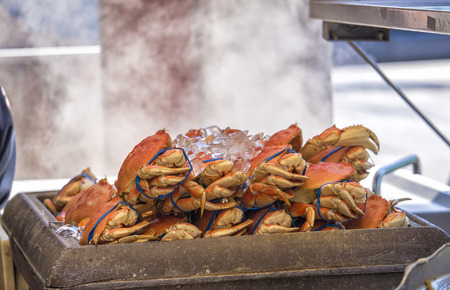 Live Crab being steamed for food in San Fransisco Stockfoto
