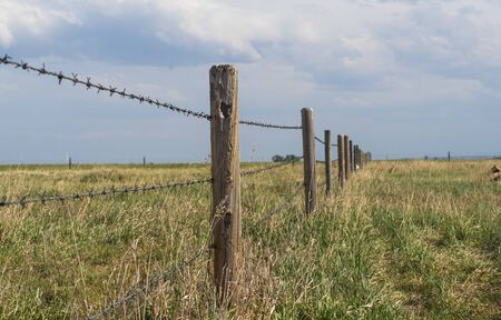 Barbed wire fence with blue cloudy skies bordering farm property in the prairies wild grass of alberta