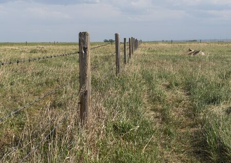 Barbed wire fence bordering farm property in the prairies wild grass of alberta Reklamní fotografie