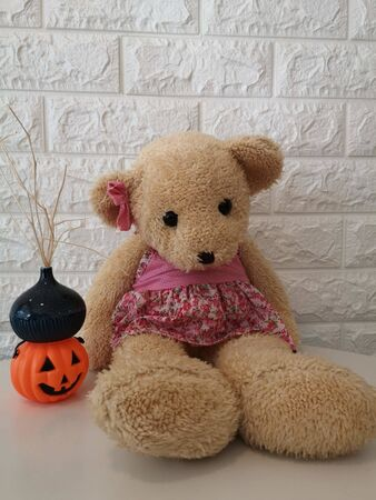 Teddy bear and the pumkin with white wall Standard-Bild