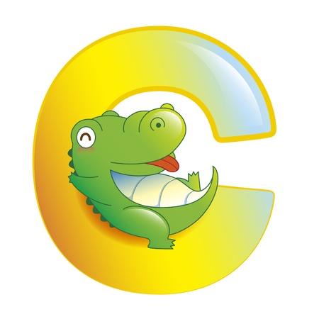 illustration of isolated animal alphabet C with crocodile on white 일러스트