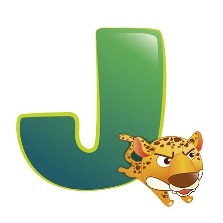 illustration of isolated animal alphabet J with leopard on white