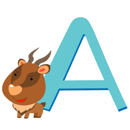 illustration of isolated animal alphabet A with antelope on white Stock Vector - 14539336