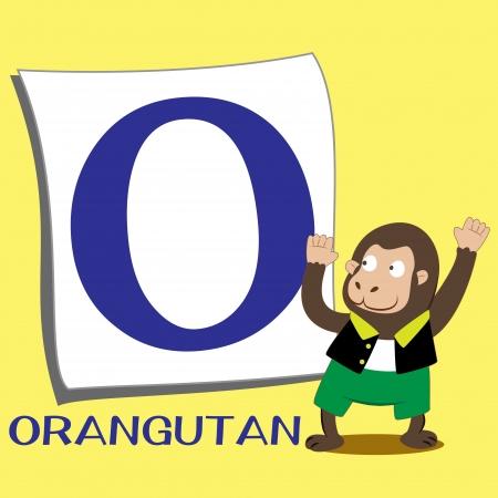 illustration of isolated animal alphabet O with orangutan Stock Vector - 15208339