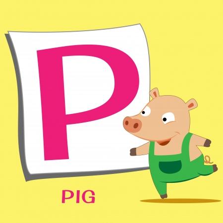 animal alphabet: illustration of isolated animal alphabet P with pig