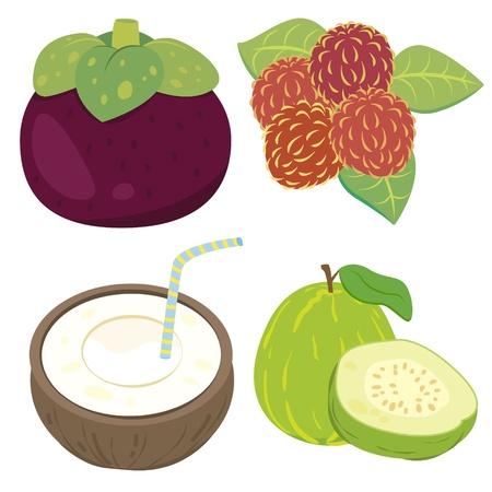 rambutan: four cute fruits with mangosteen, rambutan, coconut,and guava