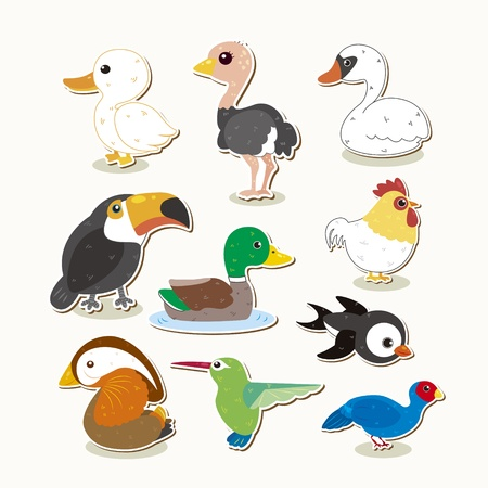 cute colorful bird set Illustration
