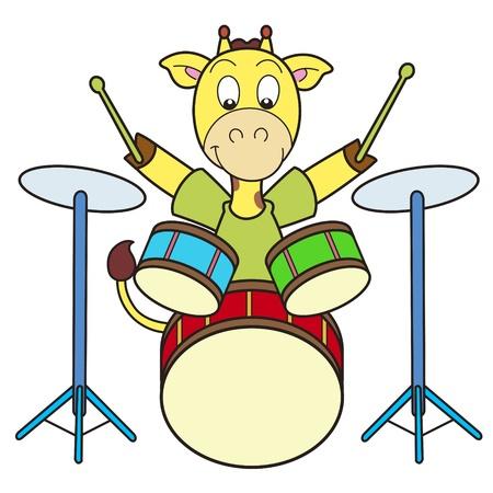 percussionist: Cartoon giraffe playing drums  Illustration