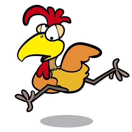 humor cartoon chicken running with white background.