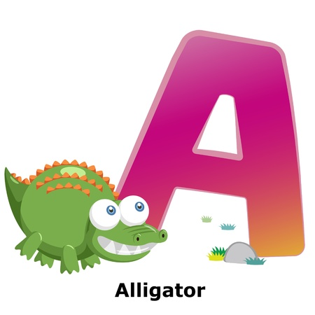 illustration of isolated animal alphabet A with alligator on white Vector