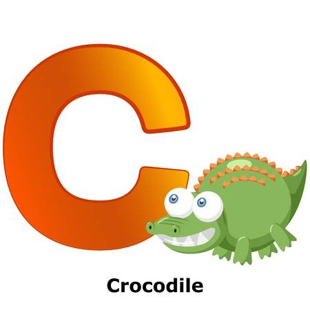 illustration of isolated animal alphabet C with crocodile on white Vector