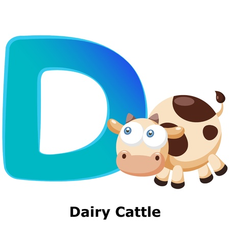 dairy cattle: illustration of isolated animal alphabet D with dairy cattle on white Illustration