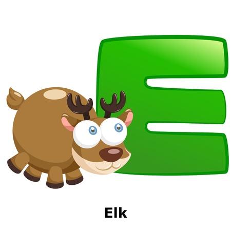 alfabeto con animales: ilustraci?e E aislado alfabeto animal alce en blanco
