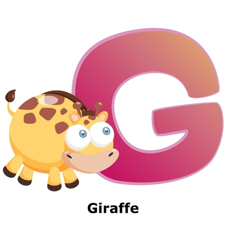alphabet wallpaper: illustration of isolated animal alphabet G with giraffe on white