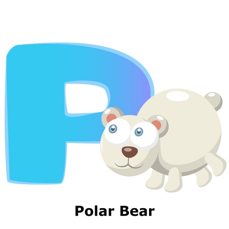 illustration of isolated animal alphabet P with polar bear on white Stock Vector - 20457785