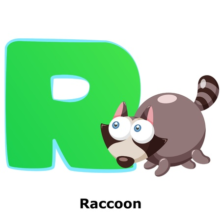 illustration of isolated animal alphabet R with raccoon on white Vector