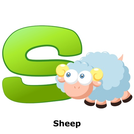illustration of isolated animal alphabet S with sheep on white Vector