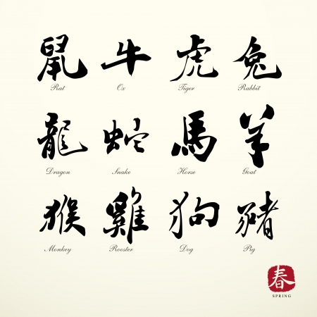 zodiac symbols calligraphy art background  Vector