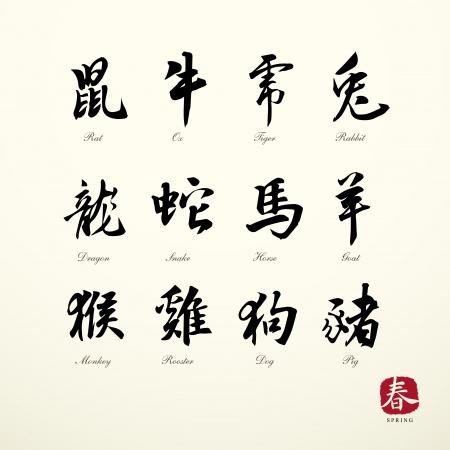 zodiac symbols calligraphy art background  Vector