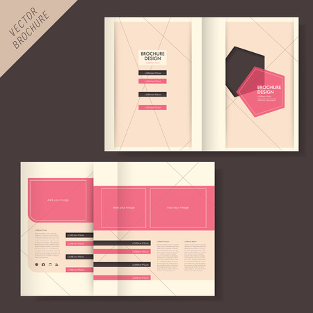 publisher: vector geometry brochure design with line and grid