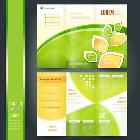 tri fold business brochure template with green Vector