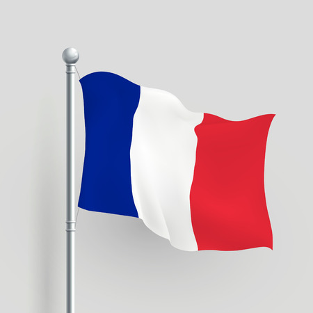 3d vector France flag blowing in a breeze Vector