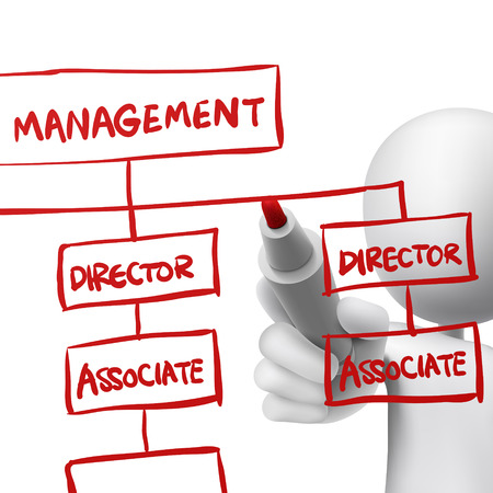 org chart drawn by a man over white background Vector