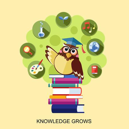 지식 평면 디자인은 노란색 통해 올빼미와 개념을 성장
