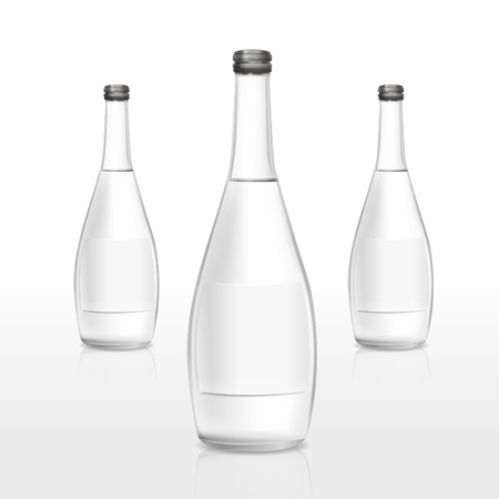 glass bottles with blank label isolated on white background Vector