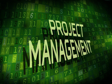 project management: project management words isolated on internet digital background