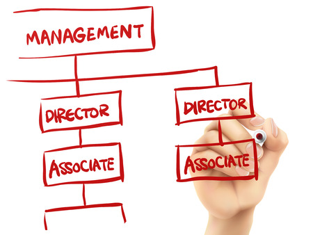 management concept written by hand on a transparent board Vector