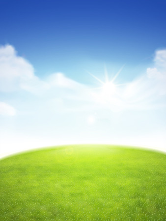 field and sky: blue sky and field of green grass background