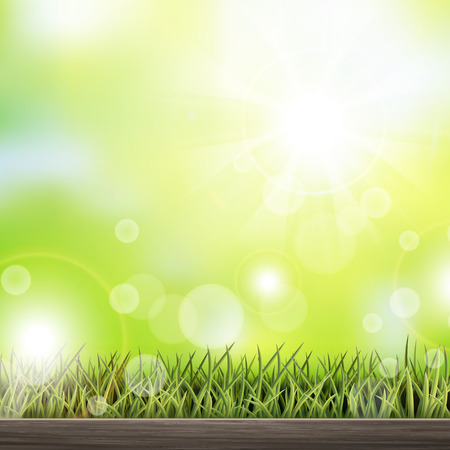 close-up look at natural grass background with wooden floor