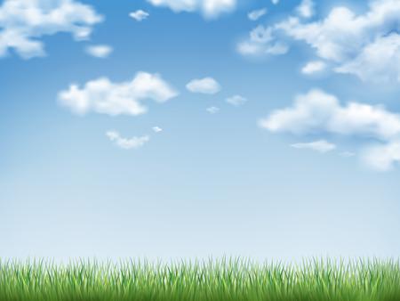 himmelsblå: blå himmel och fält av grönt gräs bakgrund