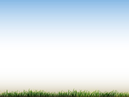 grassy field: blue sky and field of green grass background
