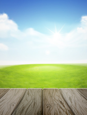 clean air: blue sky and field of green grass background