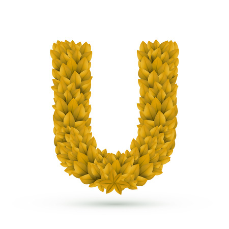 yellow leaves: 3d yellow leaves alphabet U isolated on white background Illustration