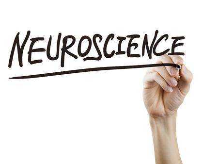 neuroscience: neuroscience word written by hand over white background