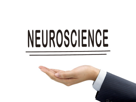 neuroscience: neuroscience word holding by businessmans hand over white background Stock Photo