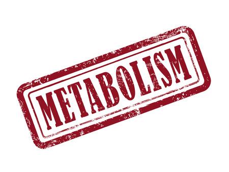 metabolism: stamp metabolism in red over white background Illustration