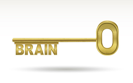 golden key: brain - golden key isolated on white background