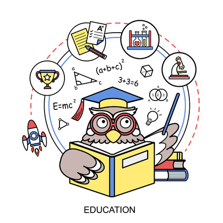 education concept with an owl in line style Vector
