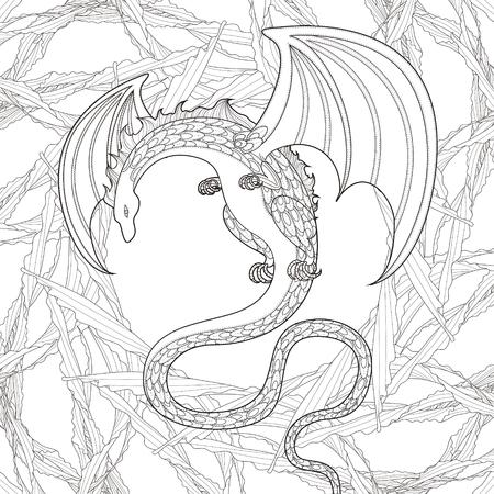 Mystère Coloriage dragon dans un style exquis Banque d'images - 44695489