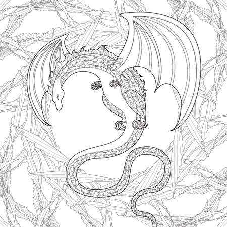 exquisite: mystery dragon coloring page in exquisite style Illustration