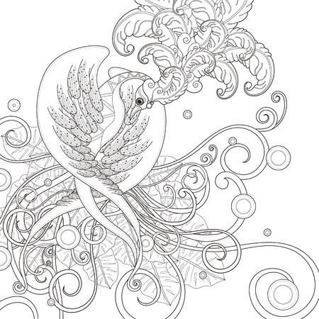 aves: hermosa p�gina para colorear p�jaro en un estilo exquisito Vectores