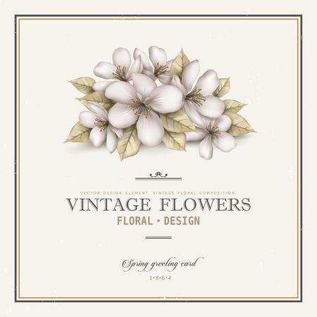 decoration design: elegant vintage card design with apple flowers decoration Illustration