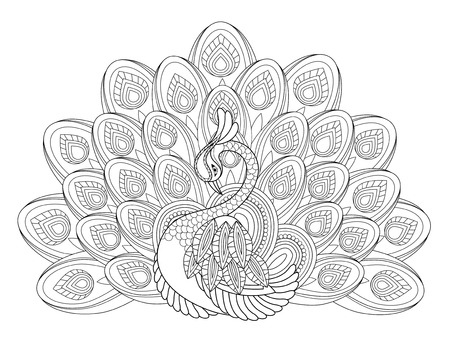 elegant peacock coloring page in exquisite style Vettoriali