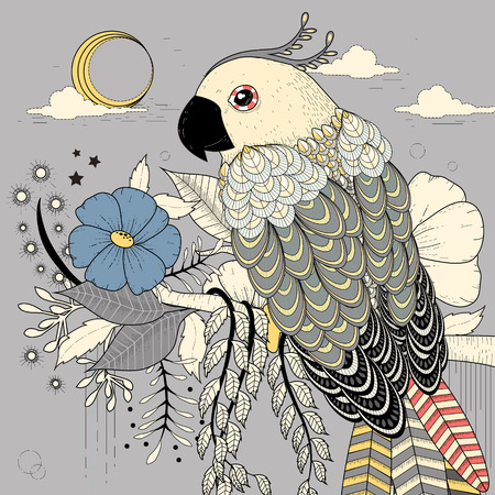 sketch book: lovely parrot coloring page in exquisite style