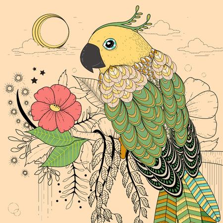 cotorra: página preciosa coloración loro en un estilo exquisito Vectores