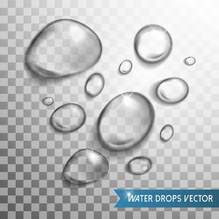 condensacion: exquisita gotas de agua recogida de los elementos que se distribuyen en el fondo transparente